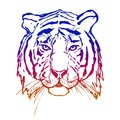 Tiger. Head. Wild animal. The logo for your design. Hand drawn. Royalty Free Stock Photo
