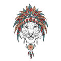 Tiger in the Indian roach. Indian feather headdress of eagle. Hand draw vector illustration Royalty Free Stock Photo