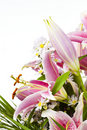 Tiger Lily flower arrangement Stock Photography
