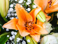 Tiger lily in a nosegay of flowers close up Stock Photography