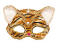 Tiger masquerade mask studio cutout Royalty Free Stock Photo