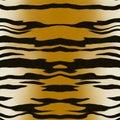 Tiger pattern Royalty Free Stock Photos