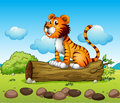 A tiger relaxing illustration of above trunk Royalty Free Stock Image