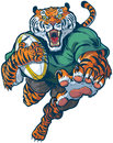 Tiger rugby mascot vector illustration cartoon clip art of a tough mean leaping or jumping forward with claws out ripping the ball Royalty Free Stock Photography
