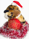 Tiger in Santa cap and red christmas ball Stock Photography