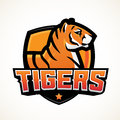 Tiger shield sport mascot template. Premade football or basketball patch design. College league insignia, High school
