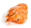 Tiger Shrimps. Prawns With Iso...