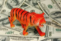 TIGER (sign of 2010 year) on d Royalty Free Stock Photo