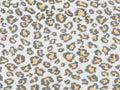 Tiger skin pattern Royalty Free Stock Photo