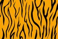 Tiger skin pattern seamless.Abstract background . Royalty Free Stock Photo
