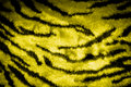 Tiger skin texture leather with black and yellow colors Stock Photos