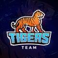 Tiger sport logo vector. Mascot design template. Football or baseball illustration. College league insignia, High School