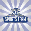 Tiger Sports Team Logo Stock Image
