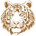 Tiger Stencil Royalty Free Stock Photo