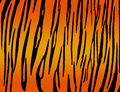 Tiger striped background Royalty Free Stock Photos