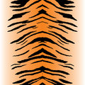 Tiger Stripes Vector Royalty Free Stock Images