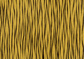 Tiger texture background Stock Photo