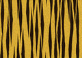 Tiger texture background Stock Image