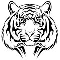 Tiger tribal tattoo vector executed in the form of a Royalty Free Stock Photography