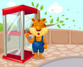 Tiger using phonebooth Royalty Free Stock Photo