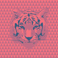 Tiger vector fashion illustration on seamless pattern Royalty Free Stock Image