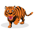 Tiger vector illustration of angry Stock Photos