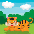 Tiger a vector illustration of cute cartoon Stock Photography