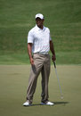 Tiger Woods Stock Photography