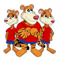 Tigers cartoon illustration of group of cute happy dressed in the same dress isolated on a white background Royalty Free Stock Images
