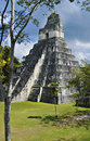 Tikal Maya Pyramid, Guatemala Stock Photography