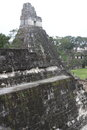 Tikal ruins a view of one of the temples at the archeological site of in present day guatemala Royalty Free Stock Image