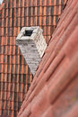 Tile roof and chimney. Stock Photography