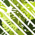 Tile tropical vector pattern with green exotic leaves and white stripes background Royalty Free Stock Photo