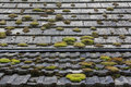 Tiled country roof covered with moss of an old cottage Stock Image
