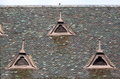 Tiled roof - RAW format Royalty Free Stock Photo
