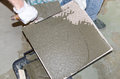 Tiler spreading tile adhesive on the back of a tile laying tiles Stock Photo