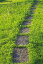 Tiles walkway in the lawn garden Royalty Free Stock Photography