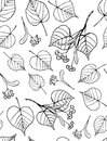 Tilia seamless pattern of hand drawn leaves and flowers Royalty Free Stock Images