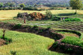 Tilled lands, India Royalty Free Stock Photo