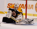 Tim thomas boston bruins goalie Royalty Free Stock Image