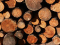 Timber Royalty Free Stock Photography
