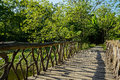 Timber bridge over grassy rivulet in sunny summer afternoon a chengdu china Stock Images