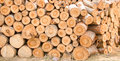 Timber close up arrange orderliness of the Stock Image