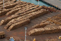 Timber exports logs stacked on a dock waiting for export Royalty Free Stock Image