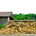 Timber factory Royalty Free Stock Photos