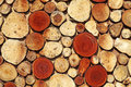 Timber log mosaic of brown cross section for textural background Stock Photo
