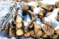 Timber Logs Piled Up Royalty Free Stock Images