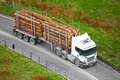 Timber logs on truck trailer