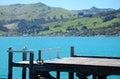 Timber pier Akaroa bay Royalty Free Stock Photo