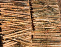 Timber resources Royalty Free Stock Photography
